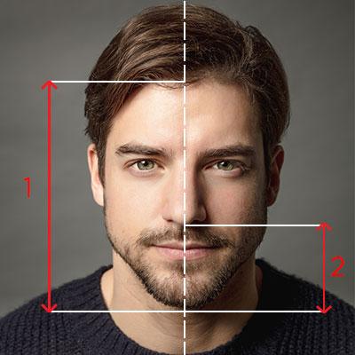 calcul visage barbe