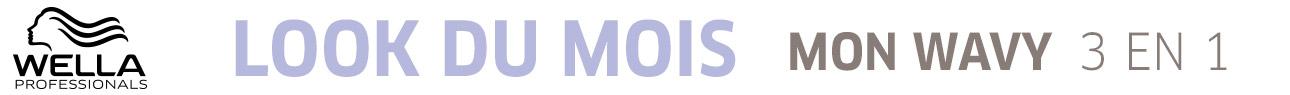 Catégorie barre Horizontale - StarduMois - Particuliers