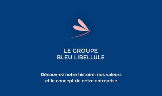 Groupe bleu libellule
