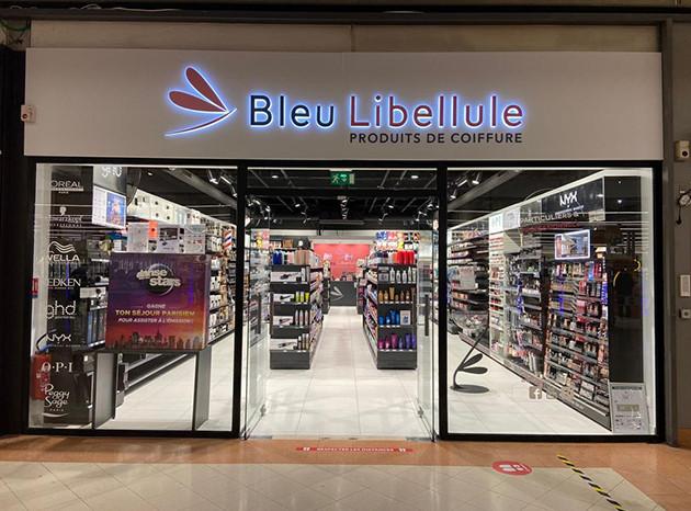 Couleur De Cheveux Bleu Libellule Coiffure De Mariage Populaire
