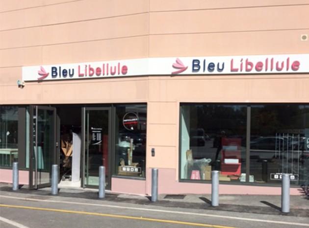 Bleu Libellule bordeaux Lac
